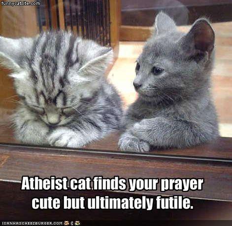 bezsens modlitwy futile=bezcelowy